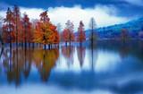 奇墅湖的秋天